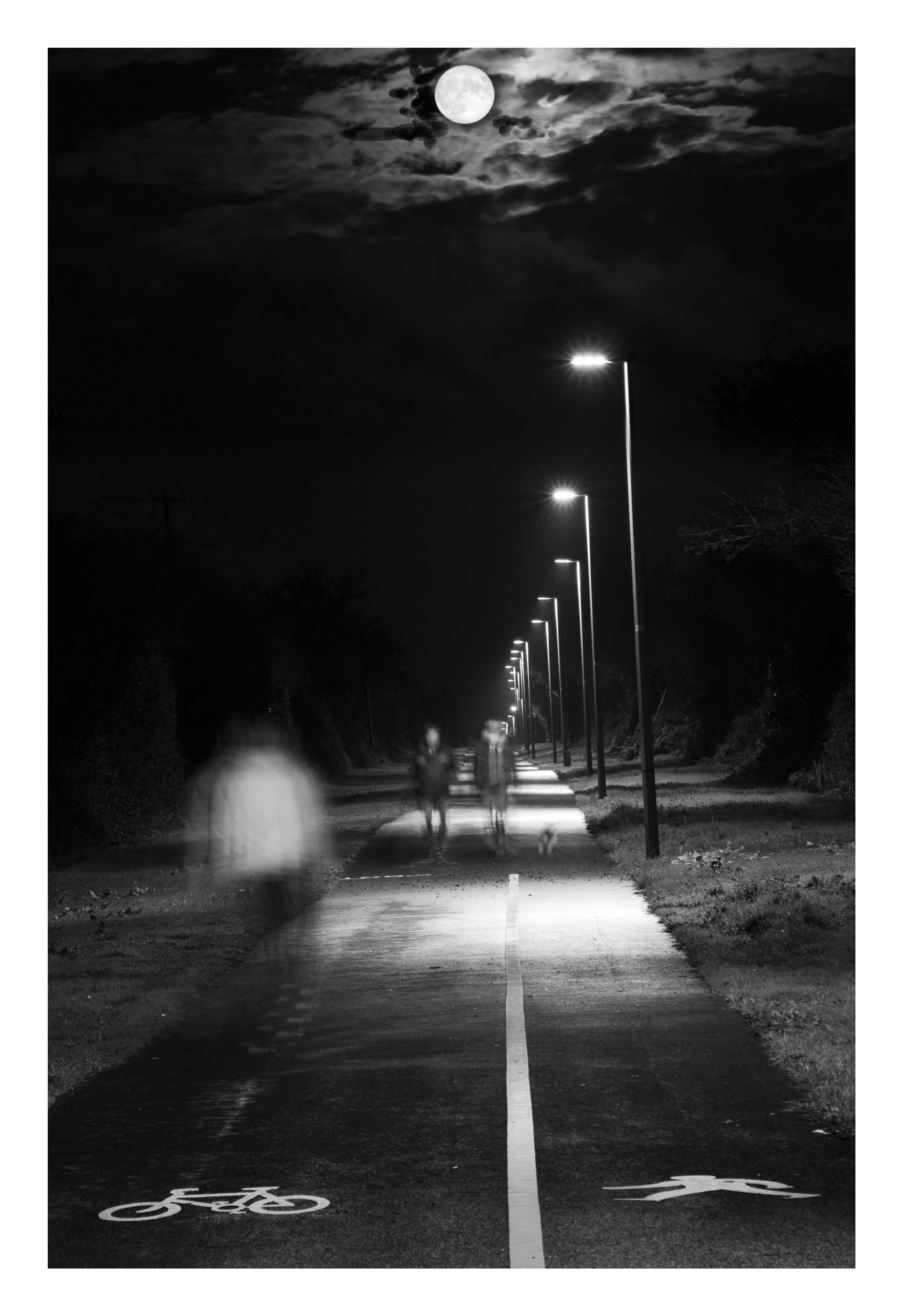 Waterford Greenway under moon light