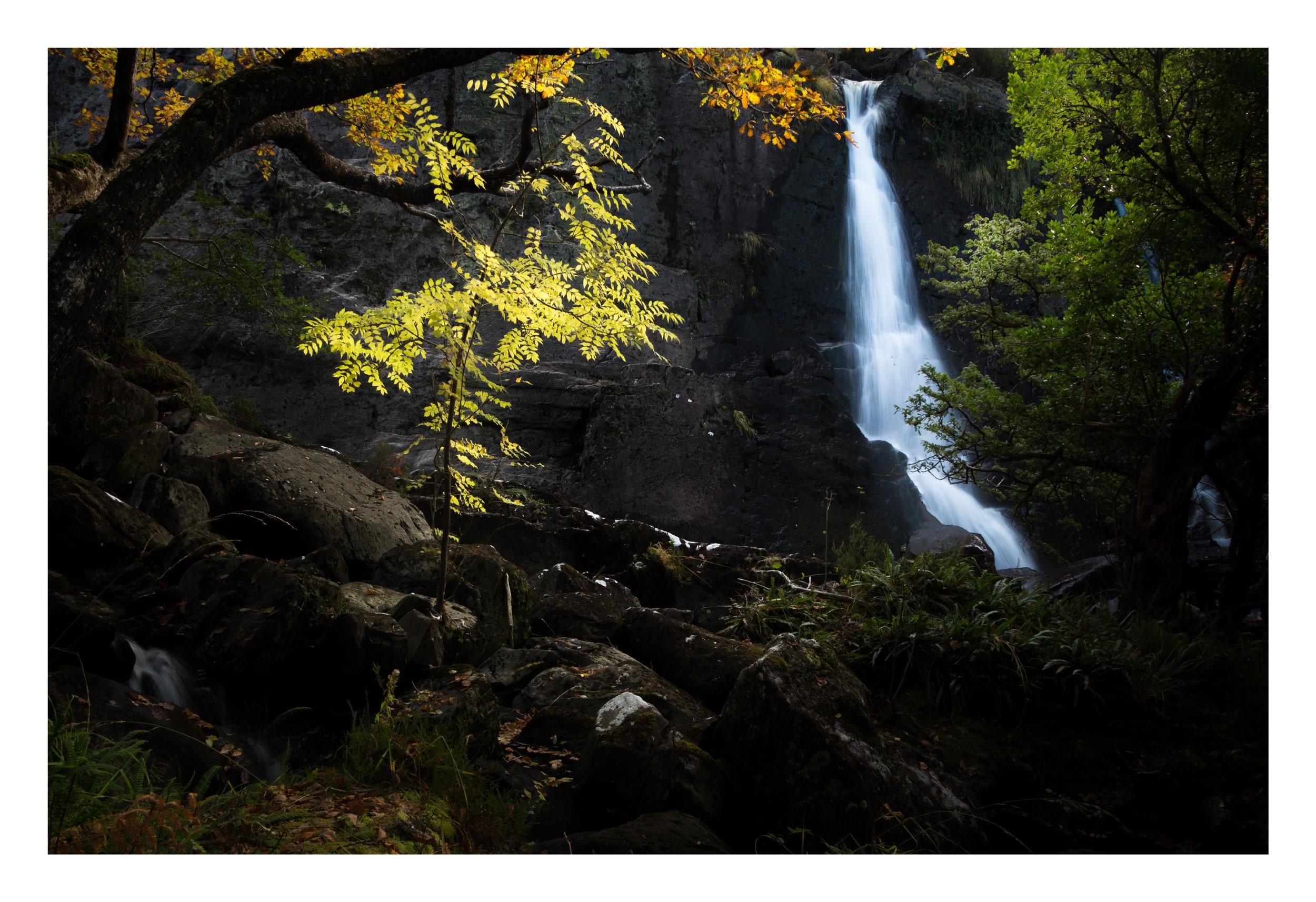 Tower Wood Waterfall Killarney.jpg