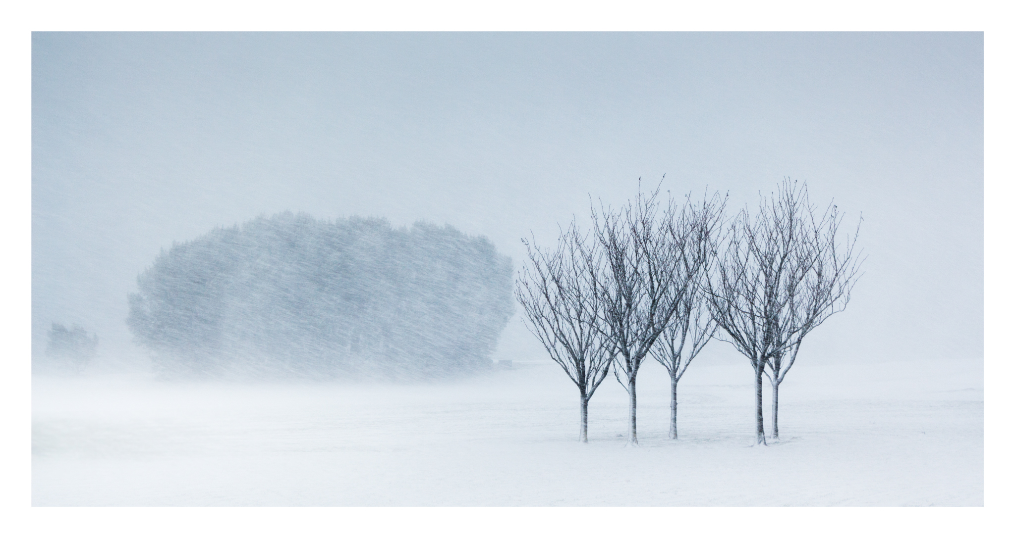 Snow day 1 -2.jpg