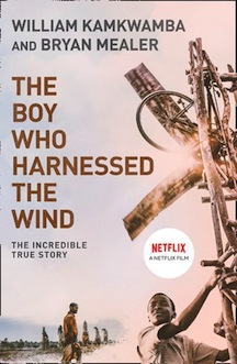 boy-harnessed-wind-review.jpg