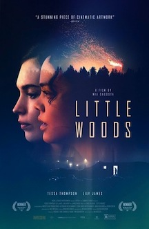 little-woods-movie-review.jpg