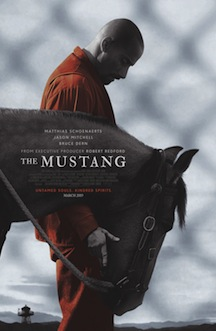 the-mustang-movie-review.jpg