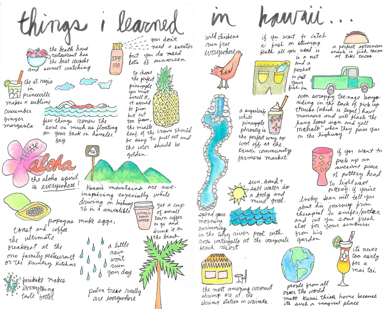 hawaii aloha flower ocean kauai drawing illustration nicole stevenson studio design drawing.jpg
