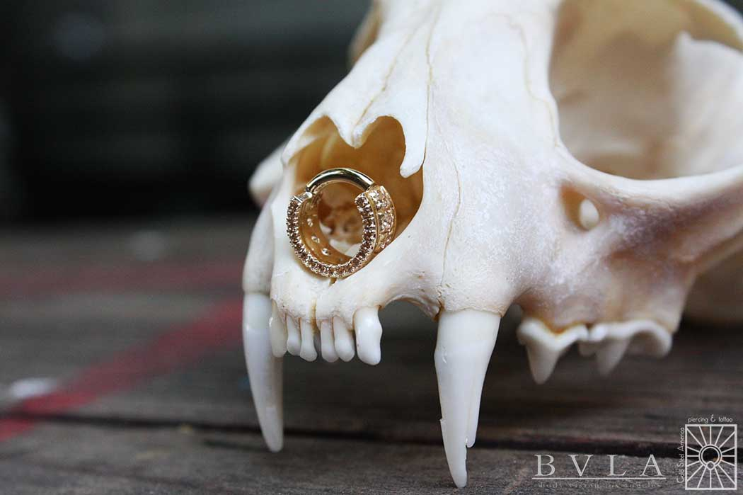 """Solid 14 karat Yellow Gold """"Tiara"""" clicker with all Champagne cz's for our own Devin. Absolutely gorgeous."""