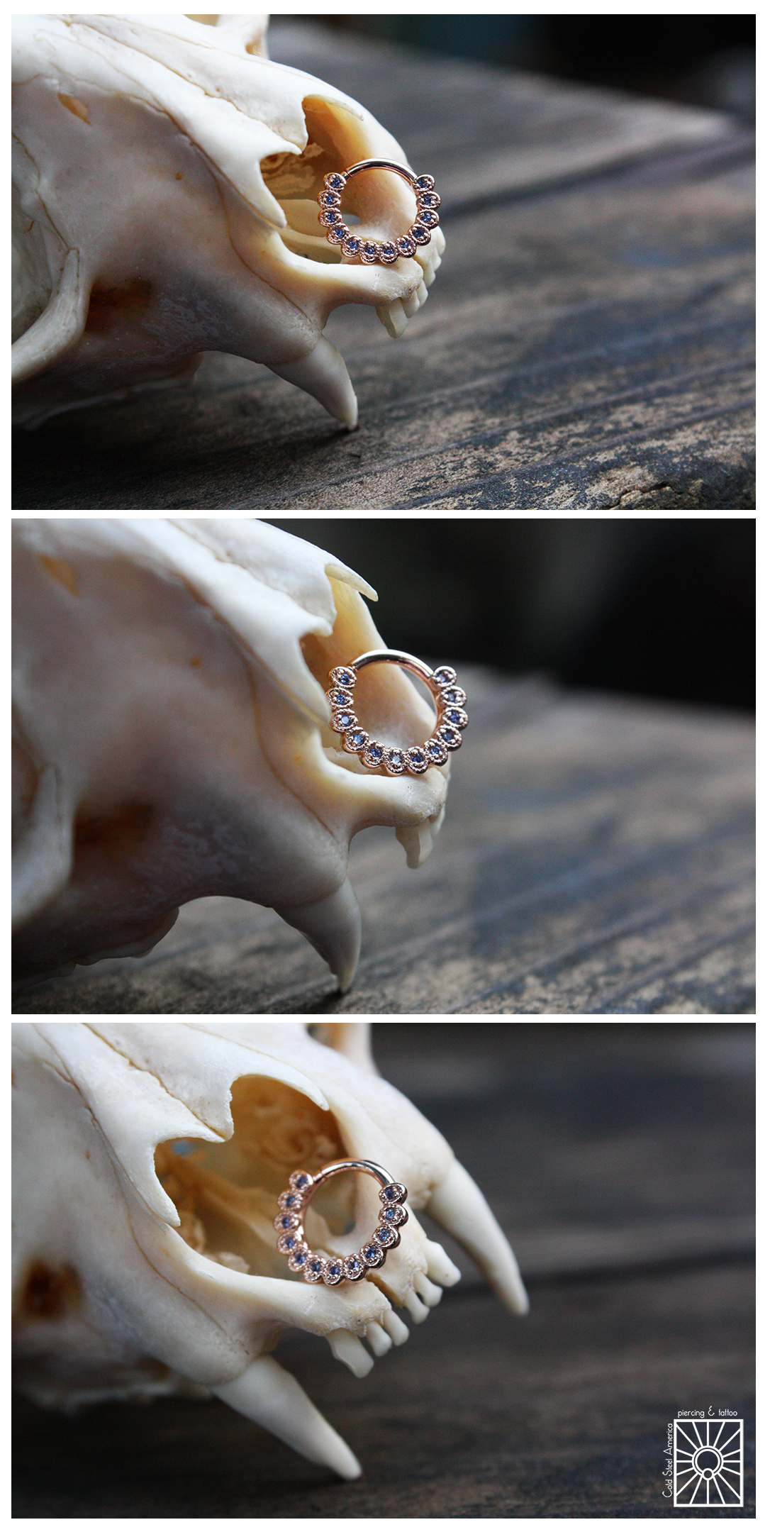 """Solid 14 karat Rose Gold """"Santa Rosa"""" continuous ring with genuine Polar Sapphires from Body Vision Los Angeles."""