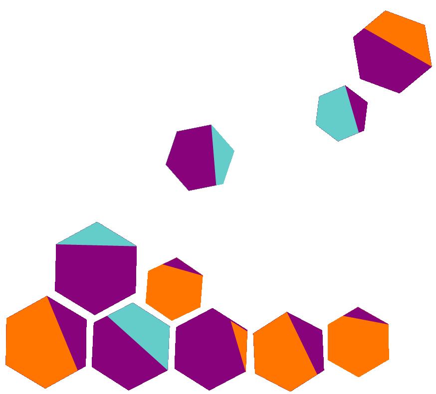 Polygon cluster