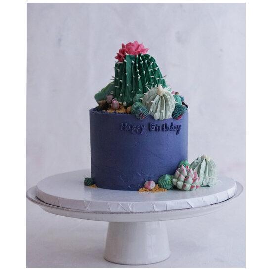 huge cactus.jpg