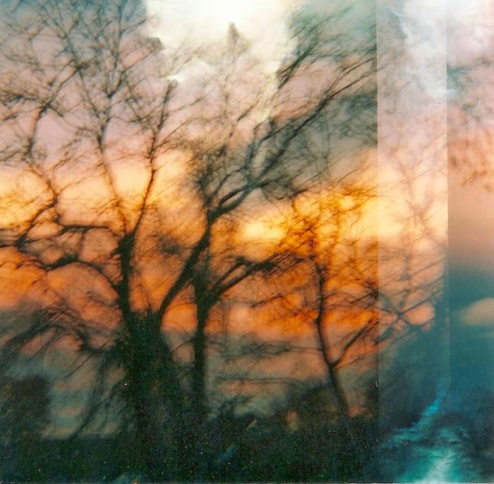 Diana-Sunset3.jpeg