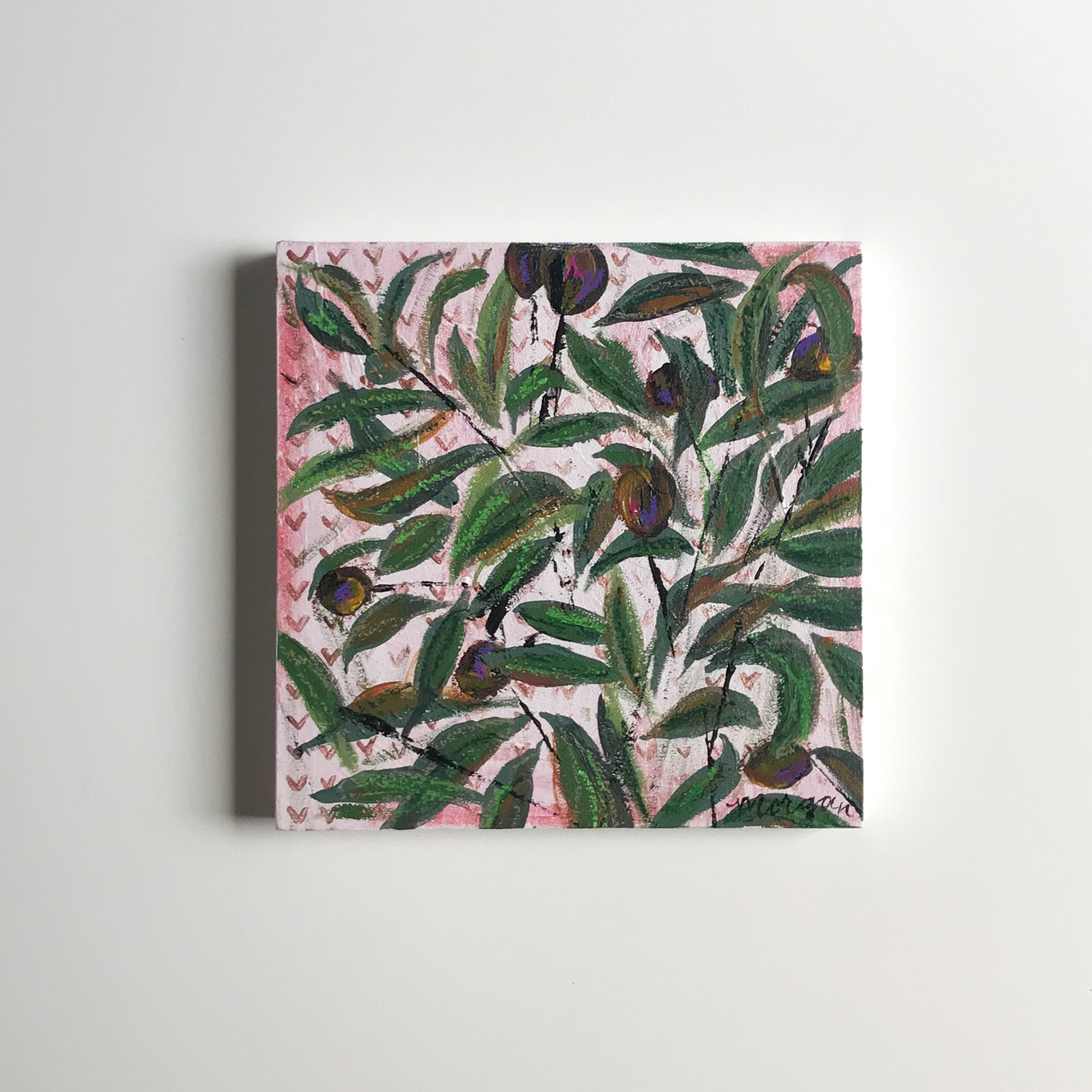 Olive Branch littles.jpg