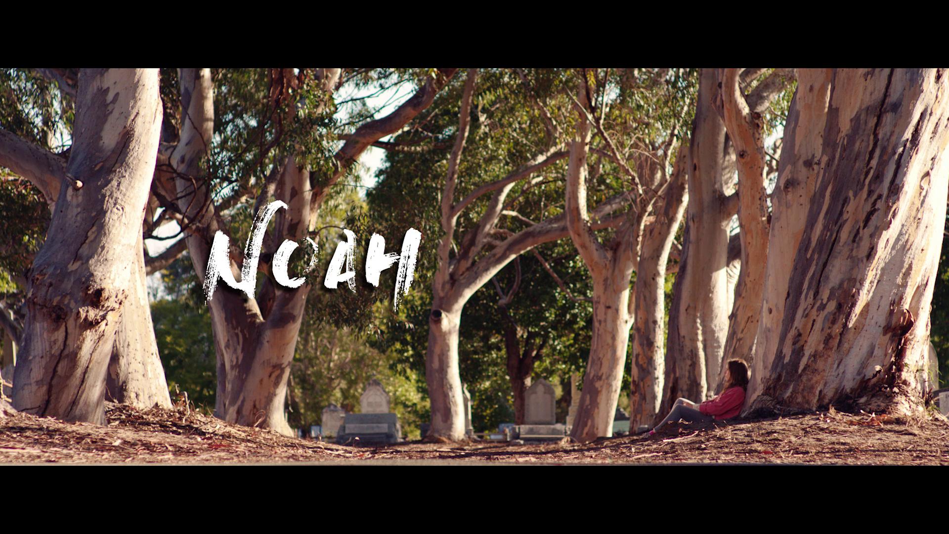 Noah (5).png