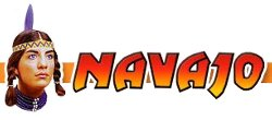 navajo-express-logo1.jpg