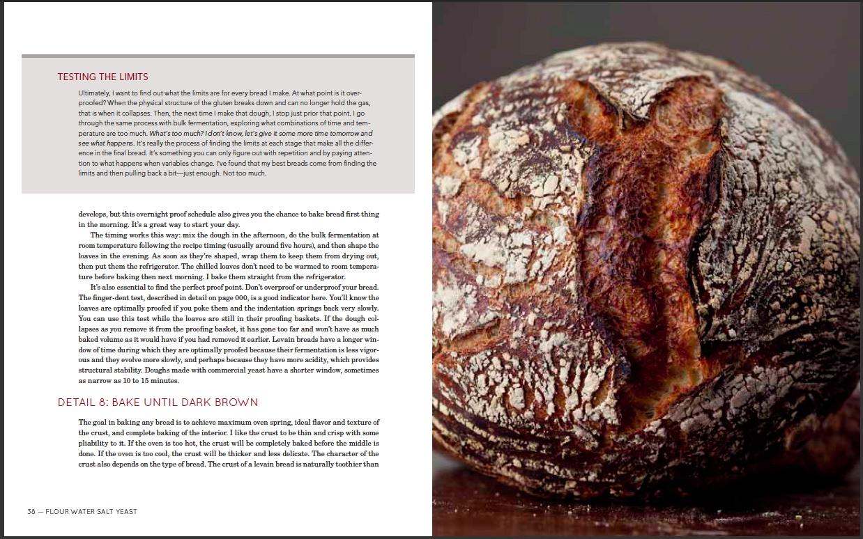 FlourWaterSaltYeast - cookbook 010.JPG