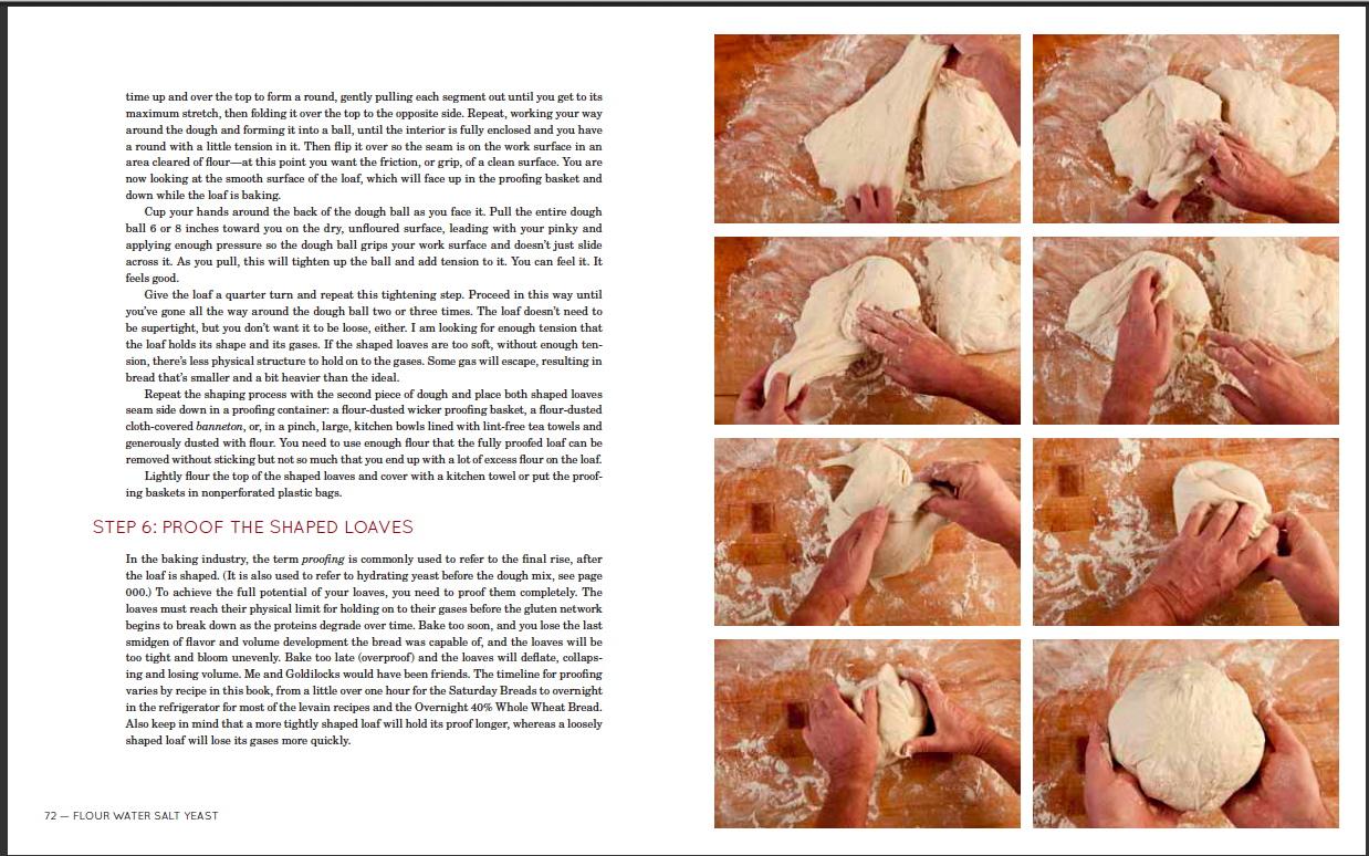 FlourWaterSaltYeast - cookbook 011.JPG