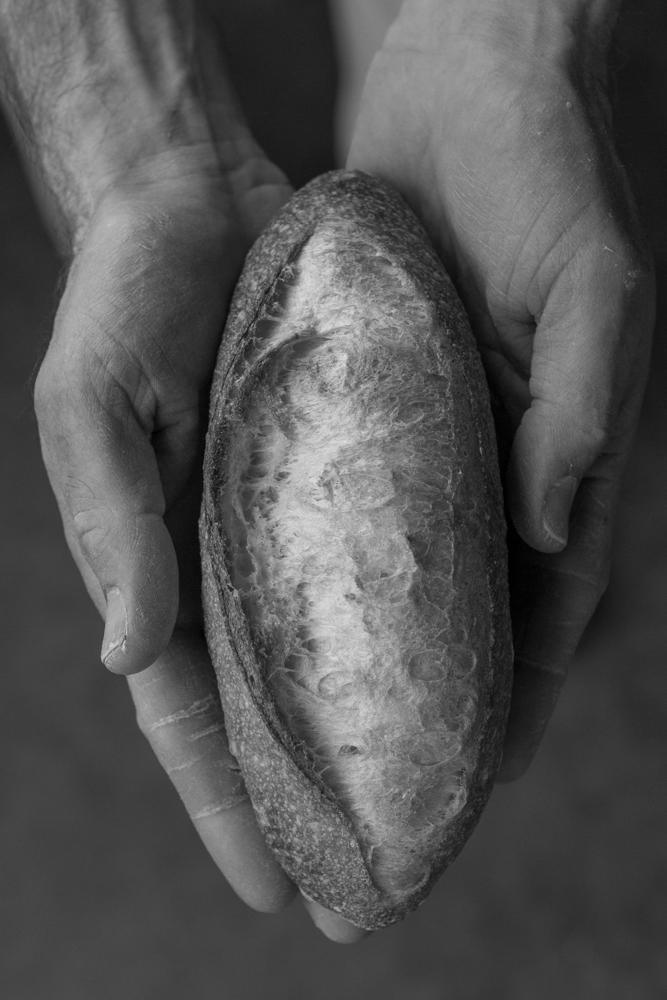 Lardo-Grassa -- Bakery -- 01034-4.JPG