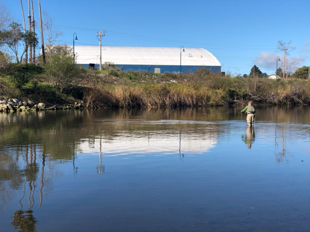 Fishing the Buckeye Hole in the shadow of the modern Warriors basketball stadium in downtown Santa Cruz. Photo: Georgina Johnson.