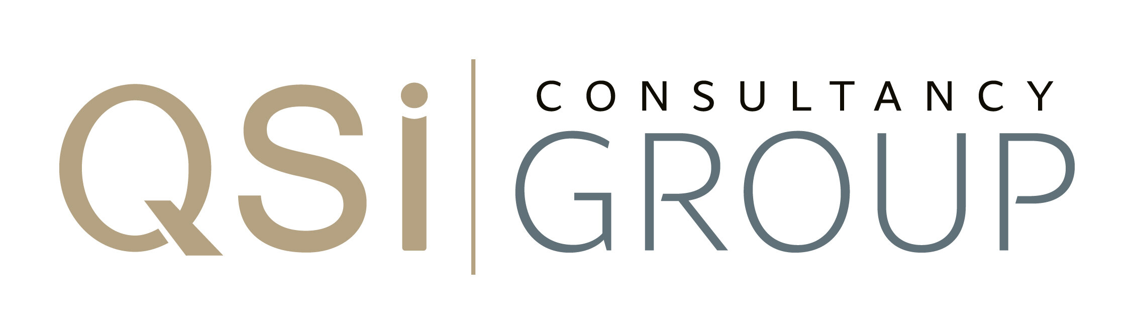 member - QSi Group_logo.jpg