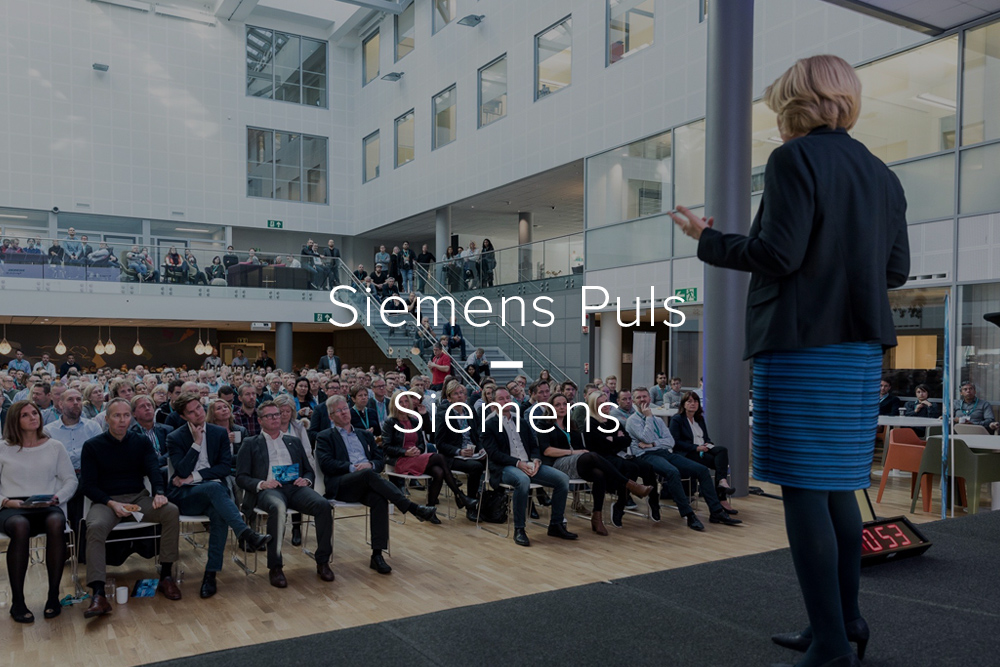Sketch Case Siemens Puls.jpg