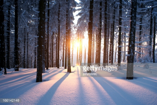 Photo by psynovec/iStock / Getty Images