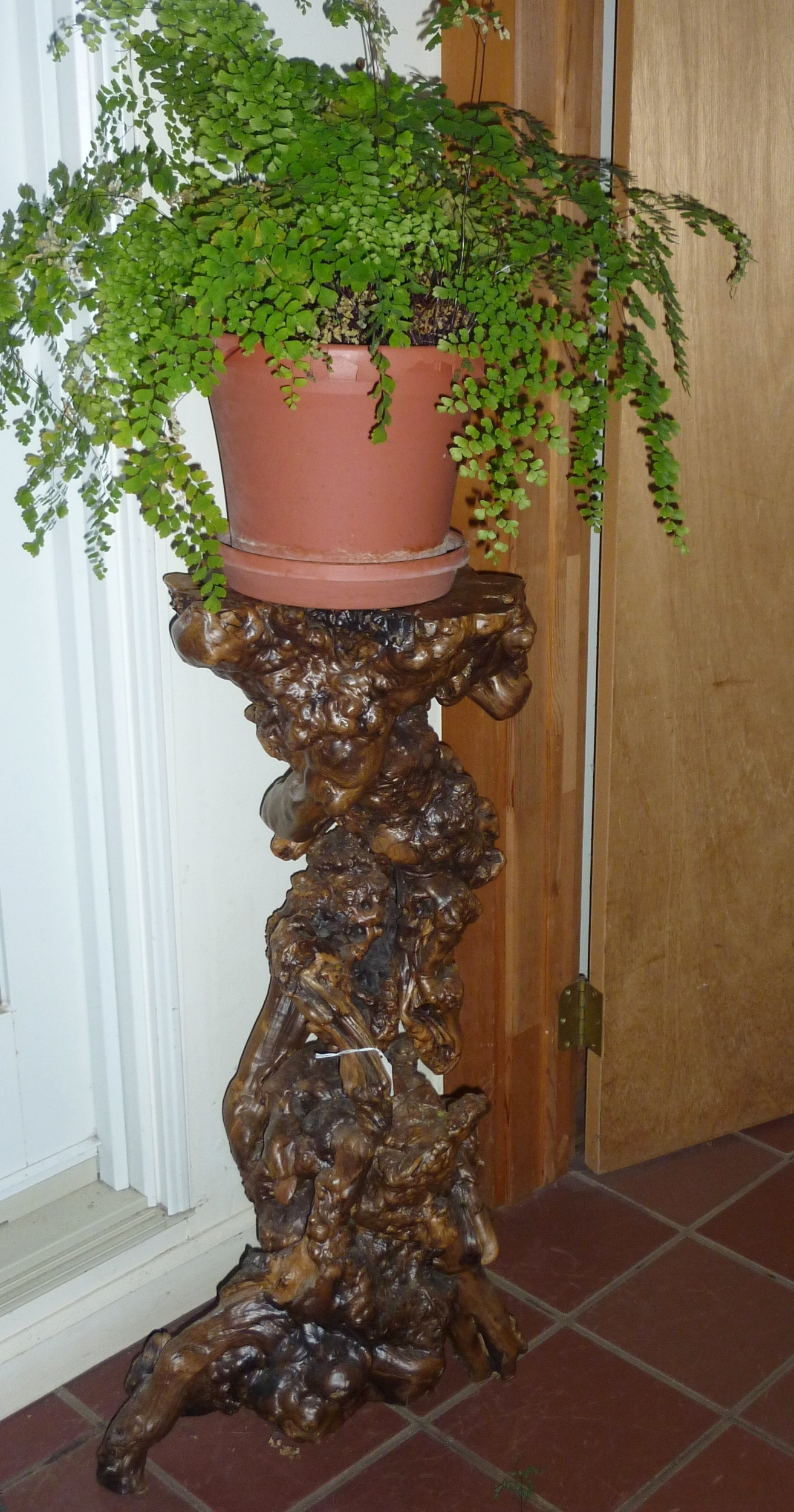 Wood burl root plant stand, China, mid 20th century.