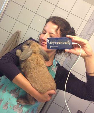 Even skal børstes og smøres. Jeg er kledd i et praktisk forkle for beskyttelse av klær. Foto: Selfie