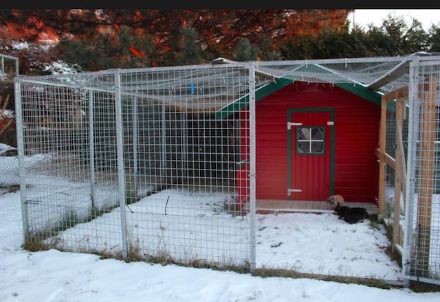 En hundegård ble til kaningård. Dukkehuset er kaninhus med egen katteluke til inngang på siden. Foto: Marit Emilie Buseth