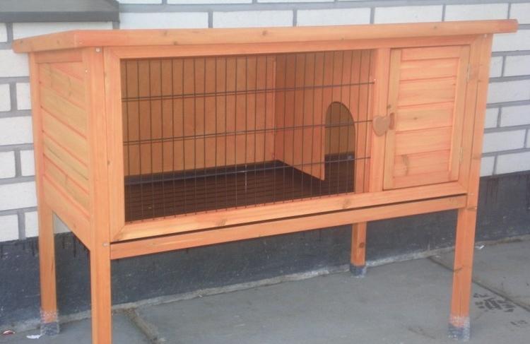 Hvorfor skal ikke kaniner bo i bur? -
