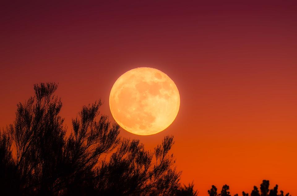 harvest-moon-1828012_960_720.jpg