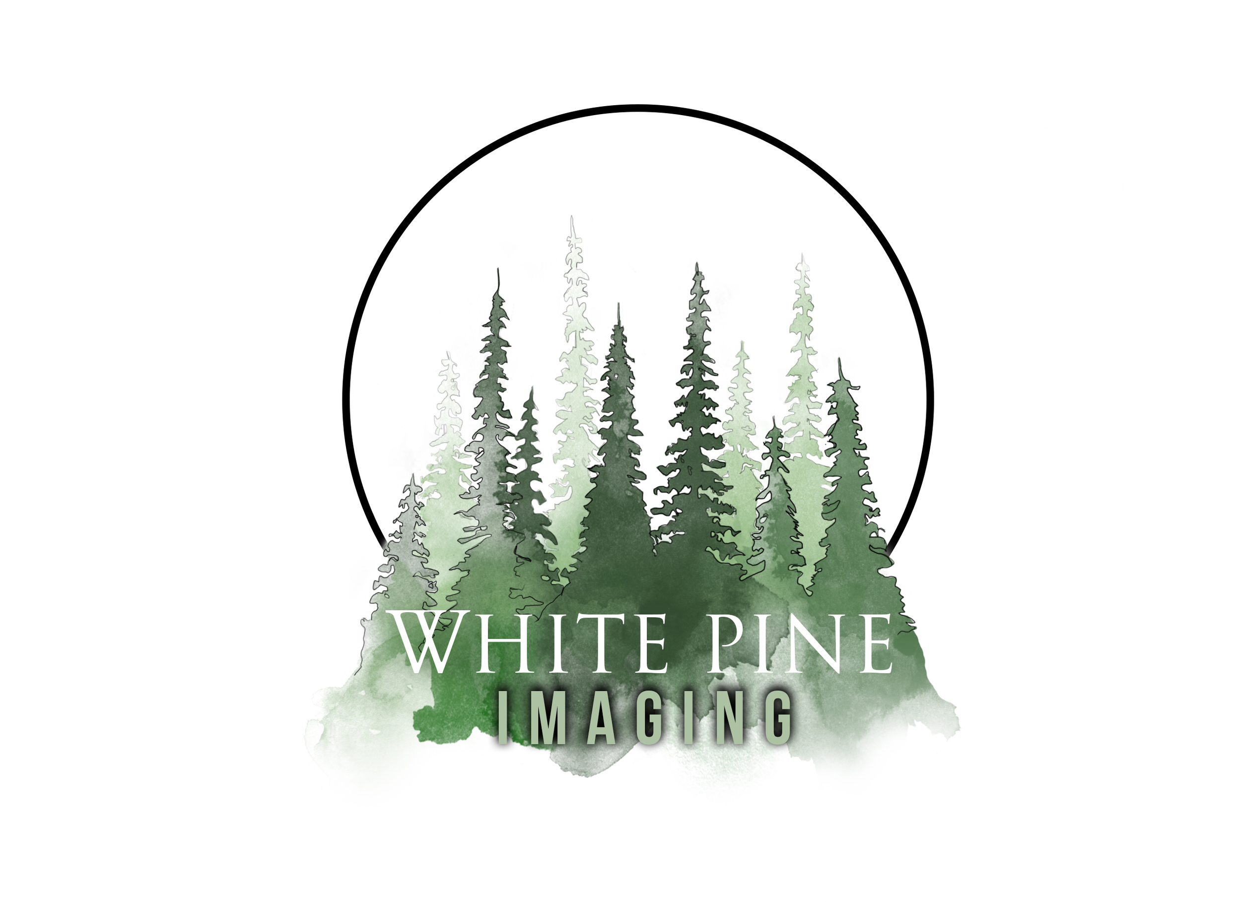 White Pine Imaging logo design 2016