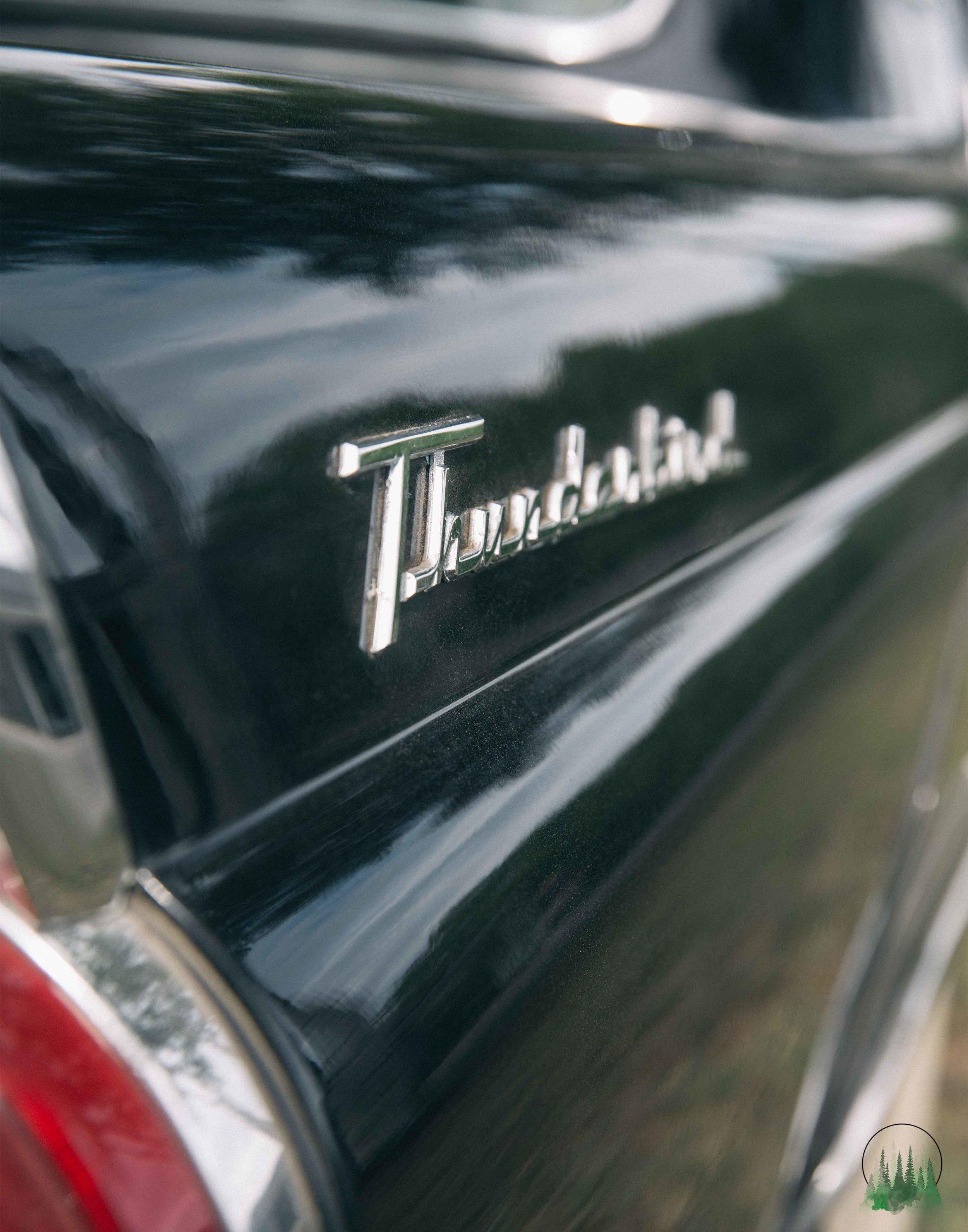 Thunderbird-11sig.jpg