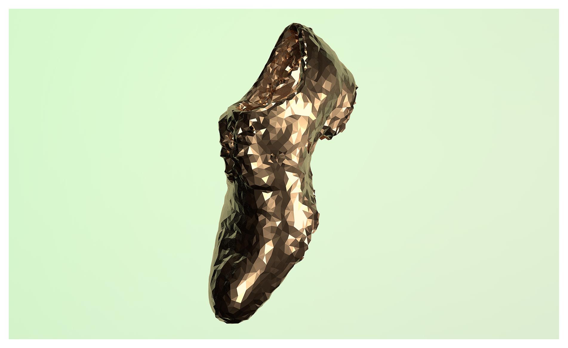 model-shoe-after-mesh.jpg