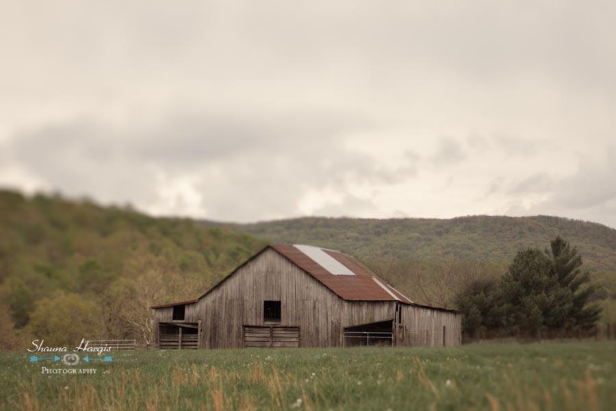 Mildred's Barn.jpg