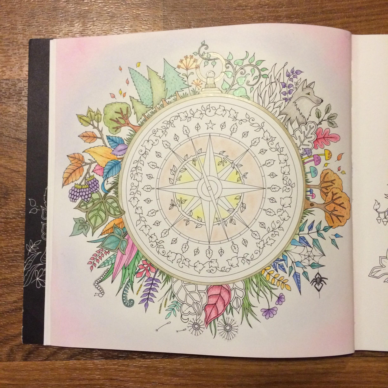 Compass - work in progress