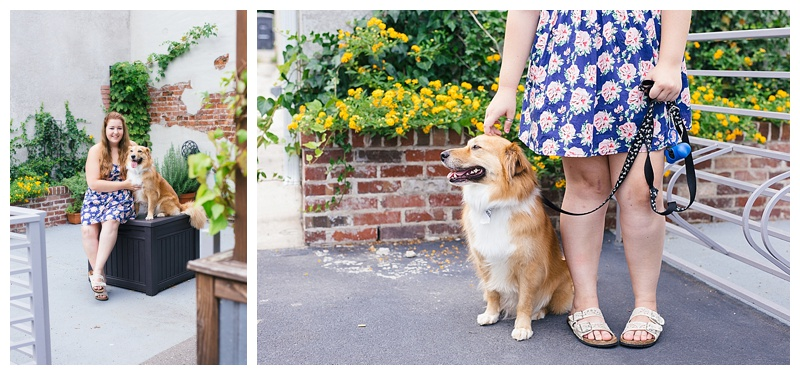 Shauna Hargis Photography - pet photos