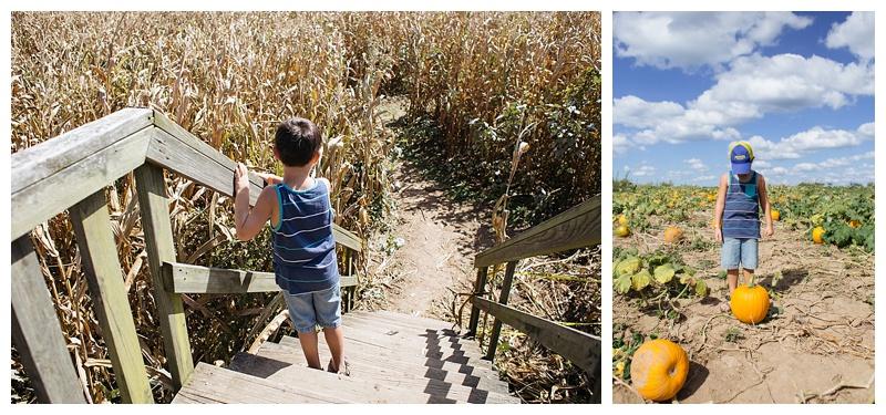 Shauna Hargis Photography - Crossville TN - Autumn Acres