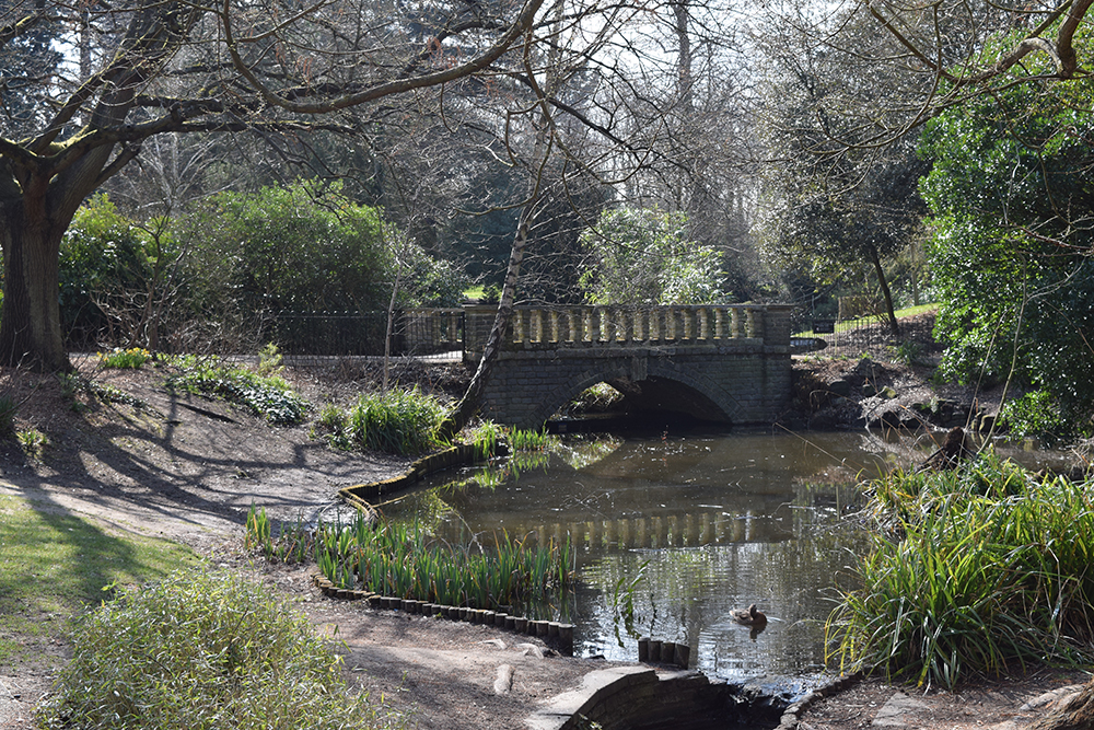 The Park is the only Park in Southwark to have a stream or rivulet running through it. These features support kingfishers and rare lamprey. A project to improve the area on the western edge of the Park where the River Peck has surfaced is under development.