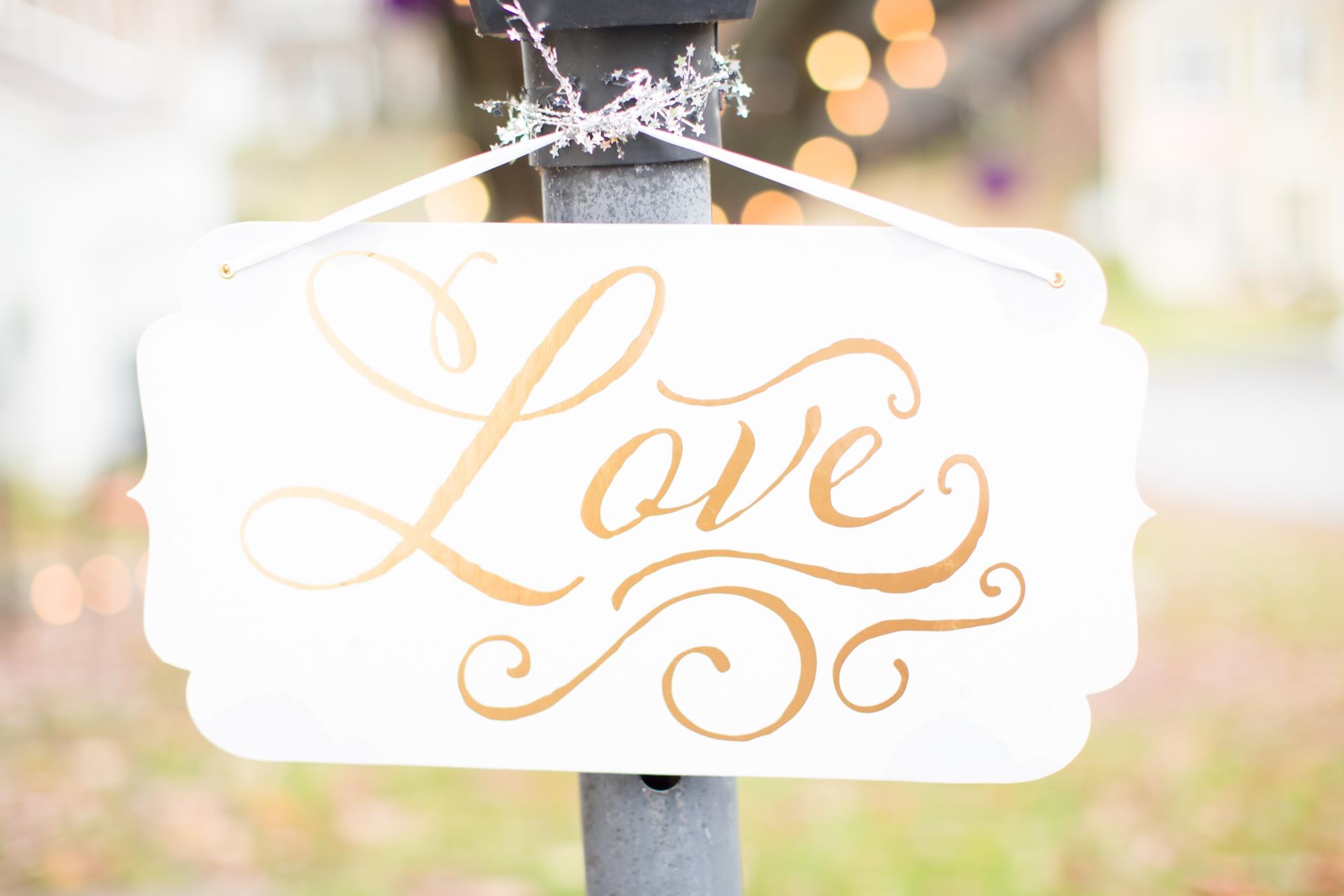 5. Durkee Wedding Reception-518_anna grace photography virginia wedding photographer dc war memorial washington dc photo.jpg