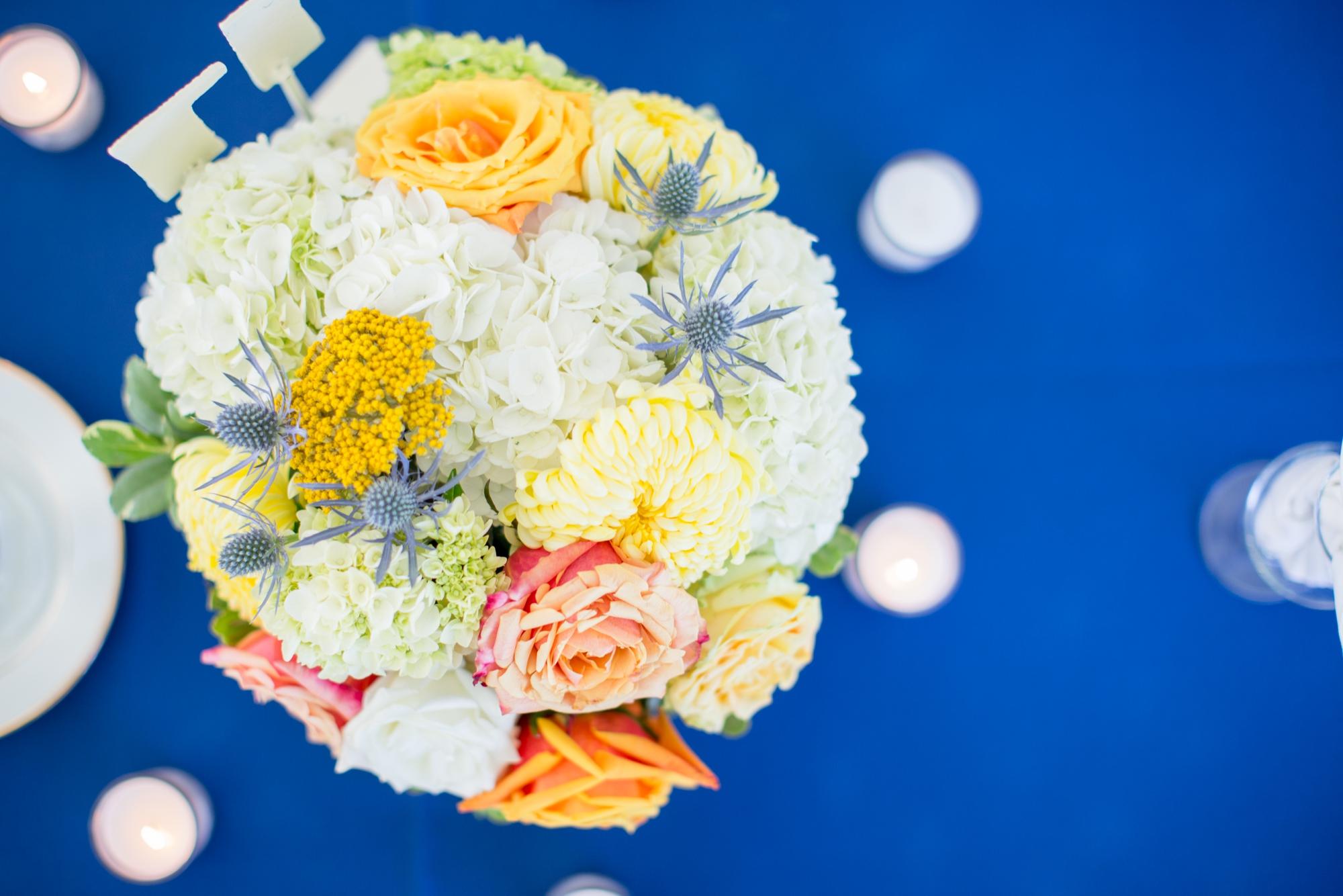 7-Miano Wedding Reception-695_anna grace photography maryland wedding photographer rockland estates.jpg