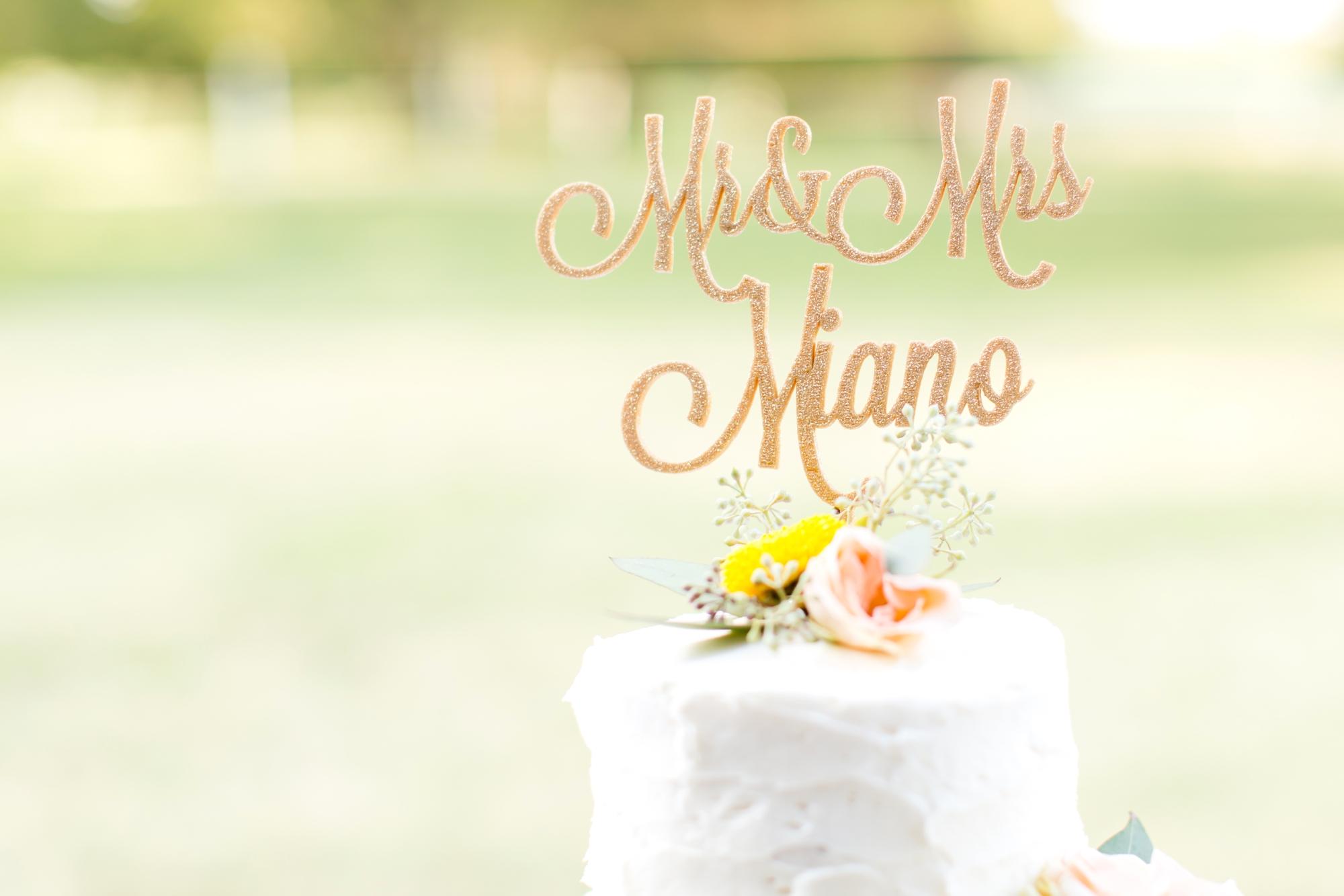 7-Miano Wedding Reception-735_anna grace photography maryland wedding photographer rockland estates.jpg