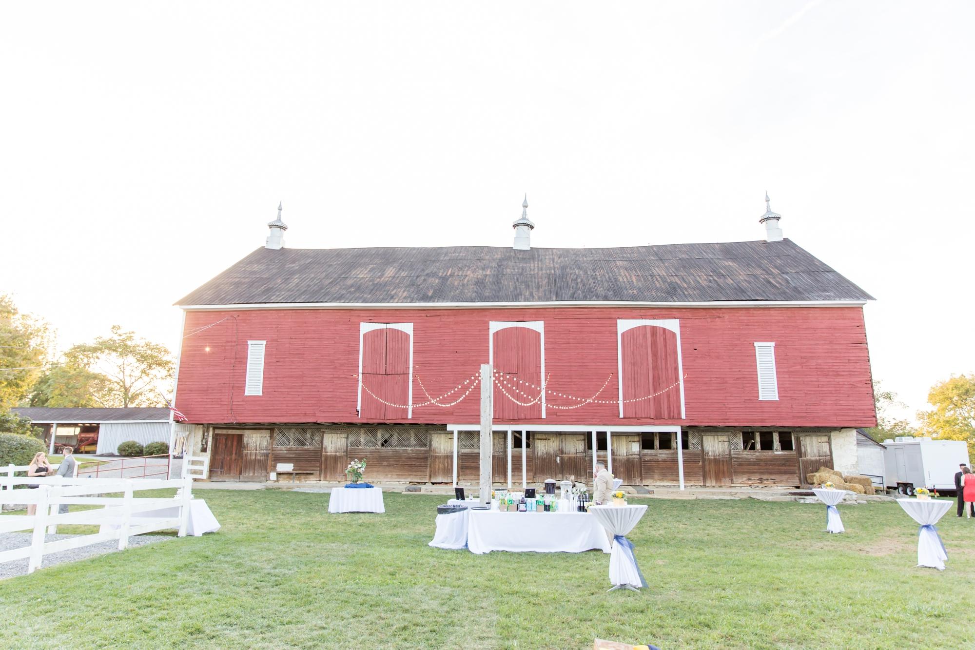 7-Miano Wedding Reception-821_anna grace photography maryland wedding photographer rockland estates.jpg