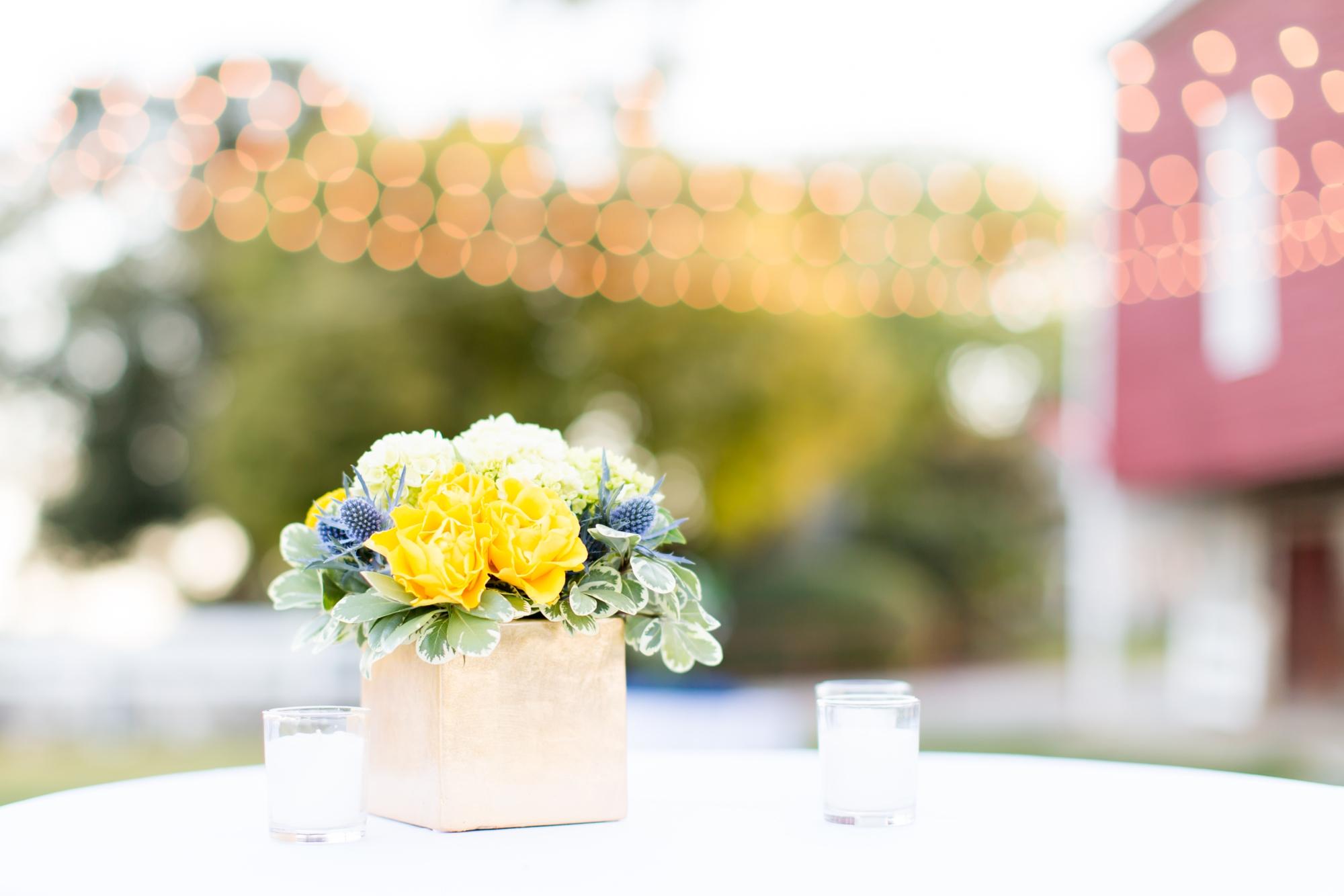 7-Miano Wedding Reception-806_anna grace photography maryland wedding photographer rockland estates.jpg