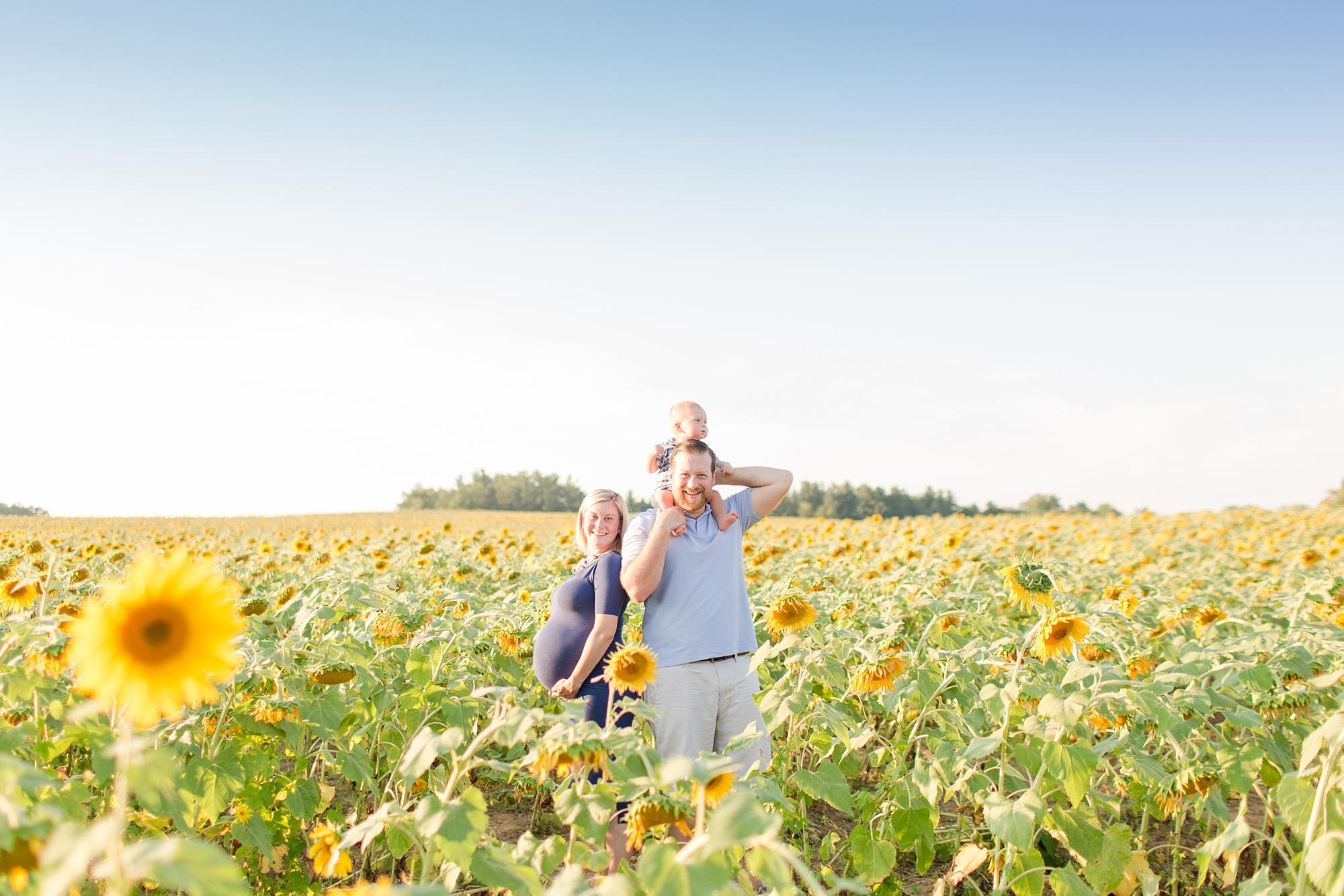 Andrews Family 2016-123_anna grace photography baltimore maryland maternity family photographer sunflower field photo.jpg