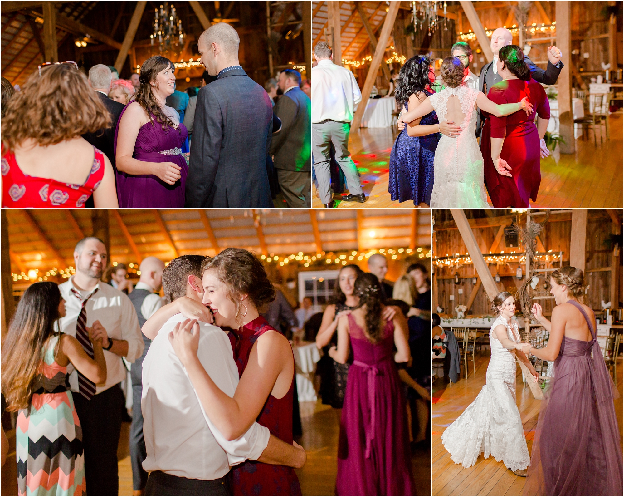 Bird 8. Reception-1231_anna grace photography baltimore maryland wedding photographer chanteclaire wedding photo.jpg