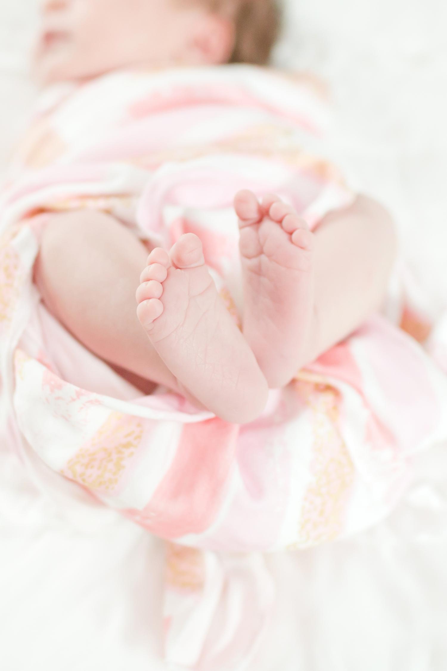 Miano Newborn-117_anna grace photography newborn photography baltimore maryland newborn and family photographer photo.jpg