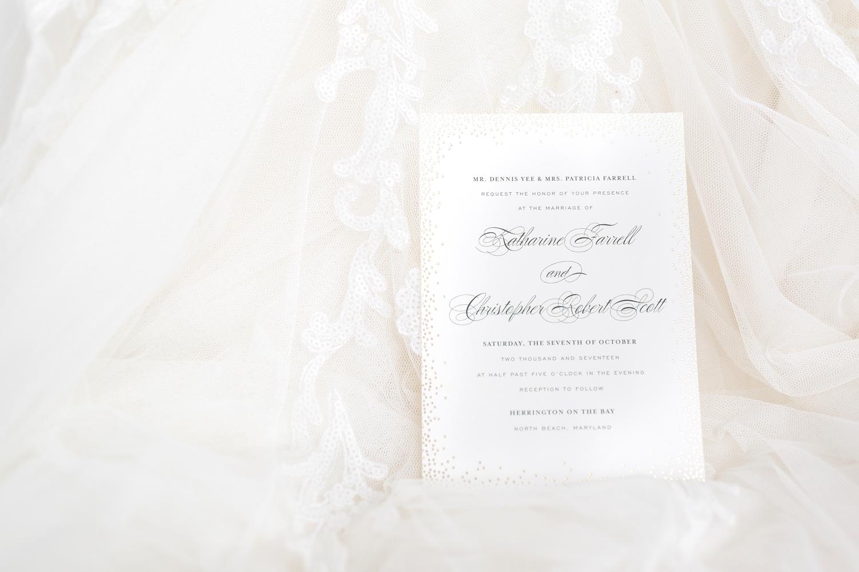 SCOTT WEDDING HIGHLIGHTS-61_herrington-on-the-bay-maryland-wedding-photographer-anna-grace-photography-photo.jpg