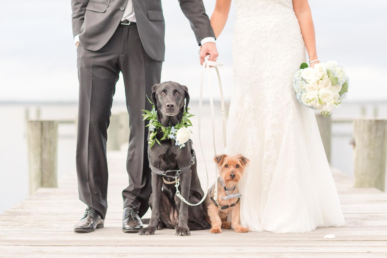 SCOTT WEDDING HIGHLIGHTS-372_herrington-on-the-bay-maryland-wedding-photographer-anna-grace-photography-photo.jpg