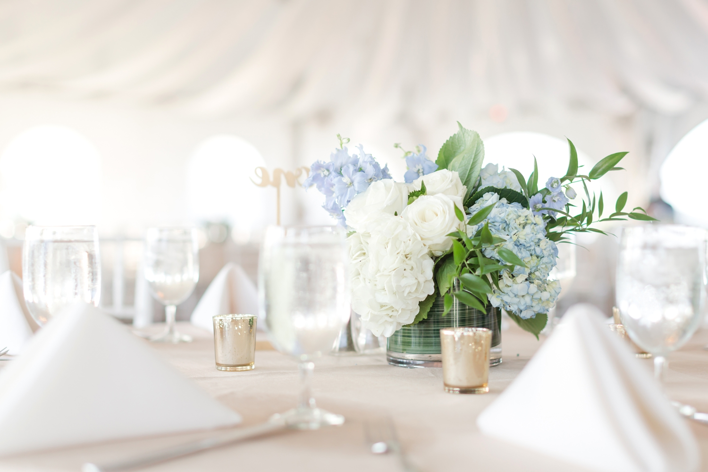SCOTT WEDDING HIGHLIGHTS-46_herrington-on-the-bay-maryland-wedding-photographer-anna-grace-photography-photo.jpg