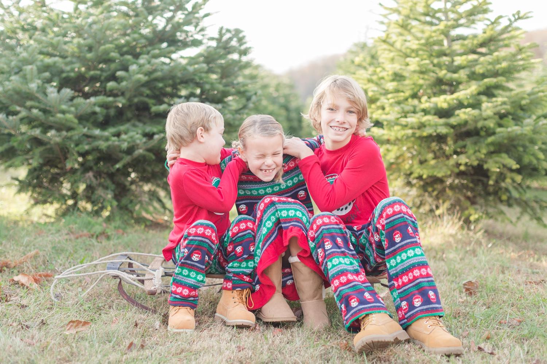 Golembiesky Family 2017-7_ruhl-tree-farm-baltimore-maryland-family-photography-anna-grace-photography-photo.jpg
