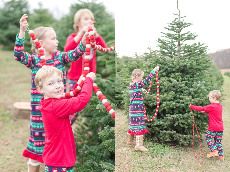 Golembiesky Family 2017-74_ruhl-tree-farm-baltimore-maryland-family-photography-anna-grace-photography-photo.jpg
