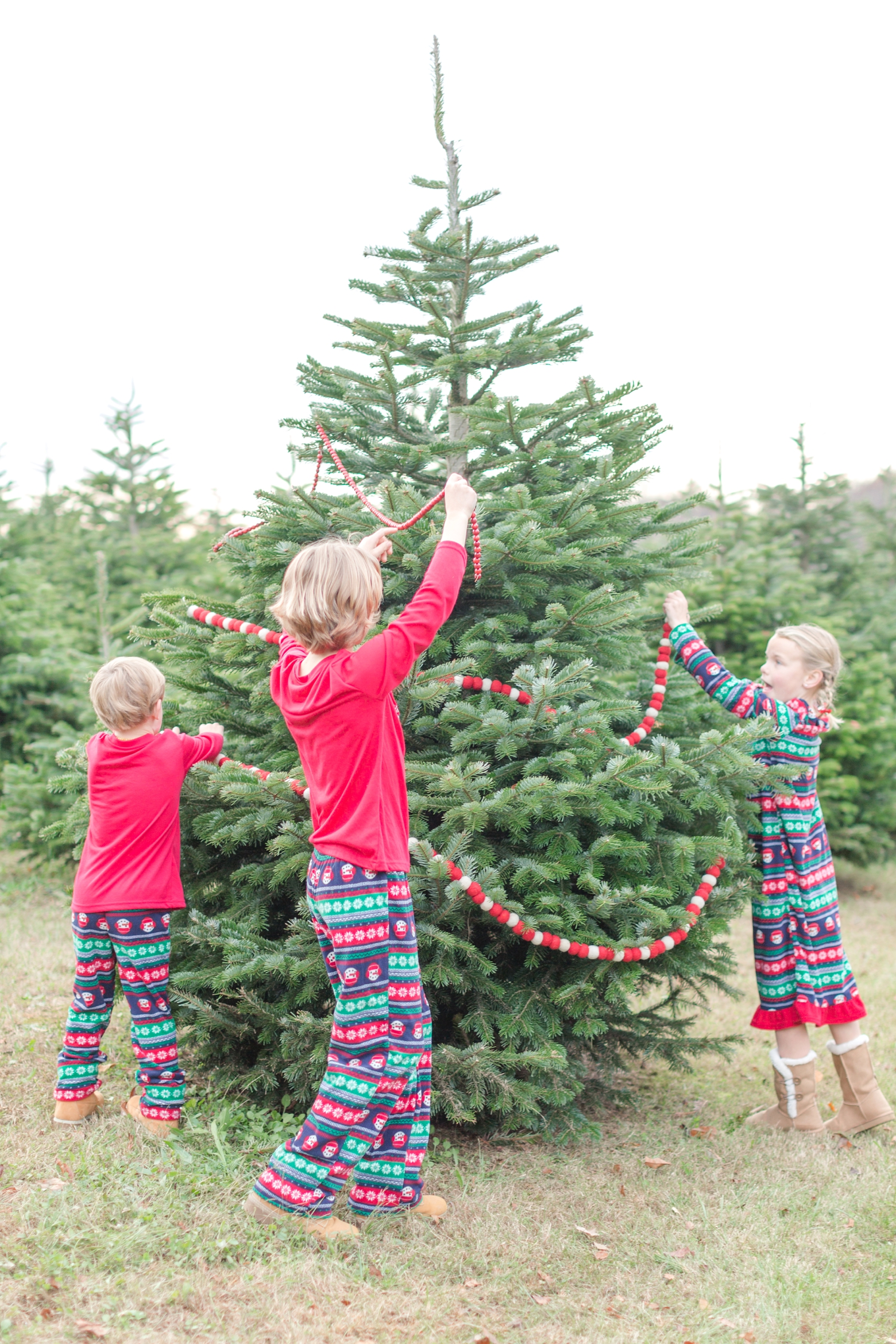 Golembiesky Family 2017-77_ruhl-tree-farm-baltimore-maryland-family-photography-anna-grace-photography-photo.jpg