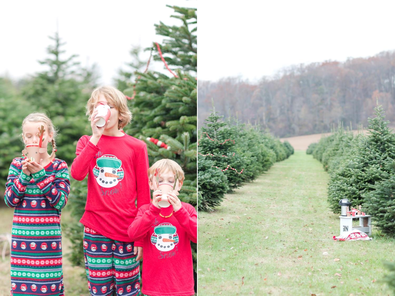 Golembiesky Family 2017-182_ruhl-tree-farm-baltimore-maryland-family-photography-anna-grace-photography-photo.jpg